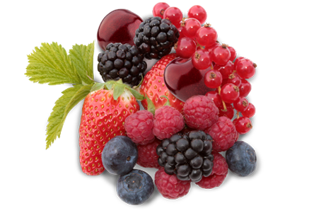 fruit_heecon