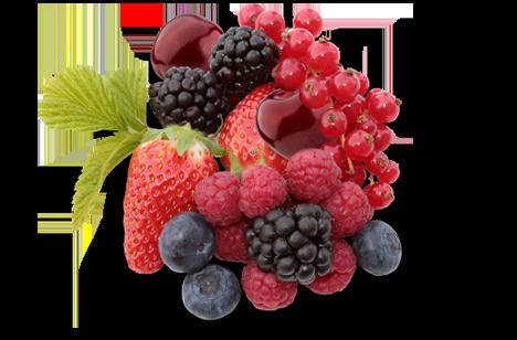 fruit_heecon